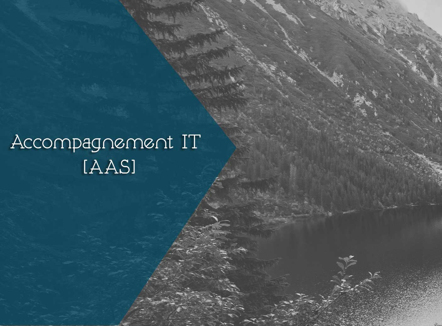 ACCOMPAGNEMENT IT [AAS]